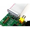 Raspberry Pi compatible GPIO Breadboard Adapter