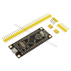 STM32F103 Black Pill Development Board
